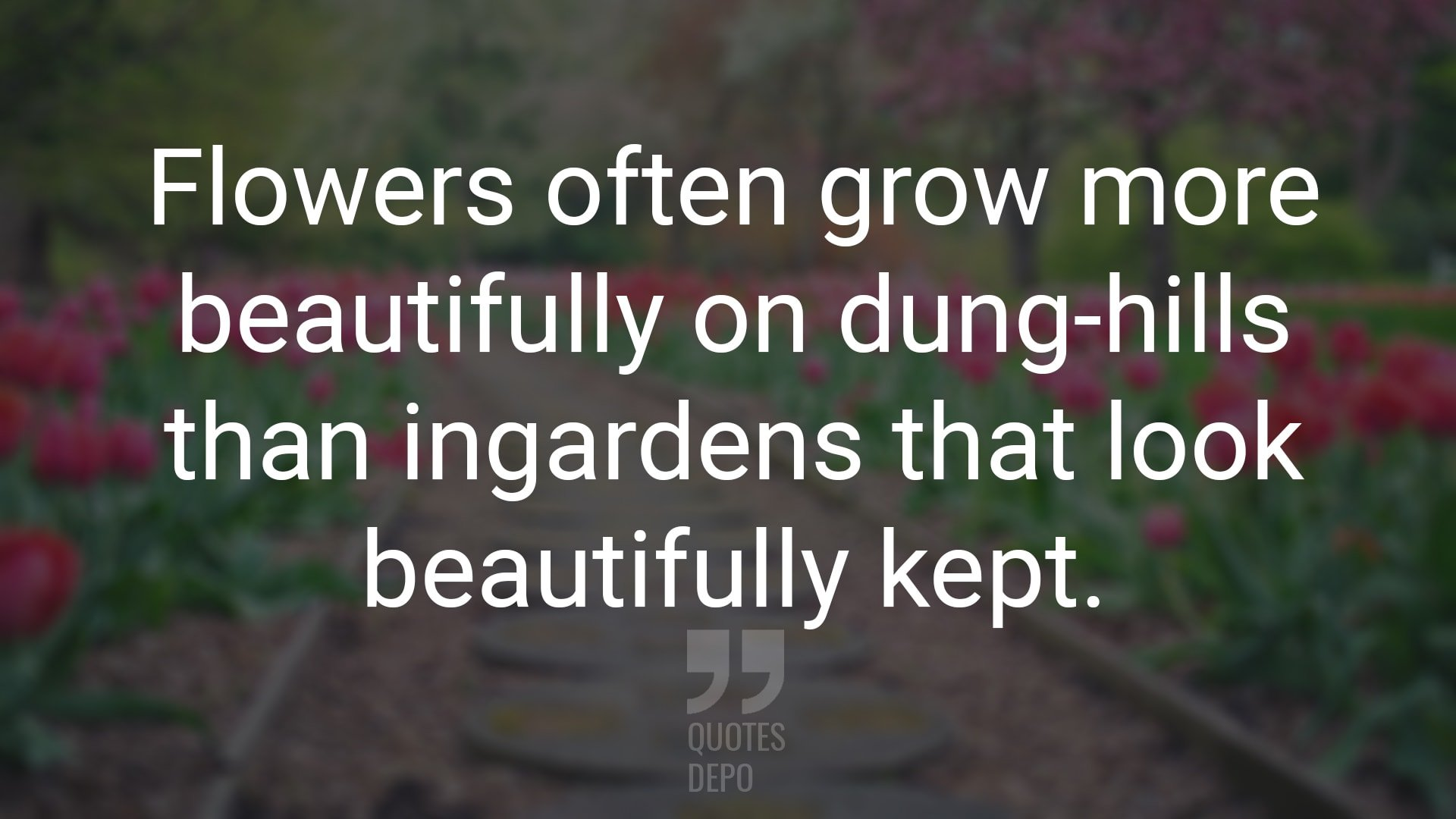 flowers often grow more beautifully